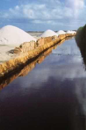 salinas near trapani, saltvia del sale
